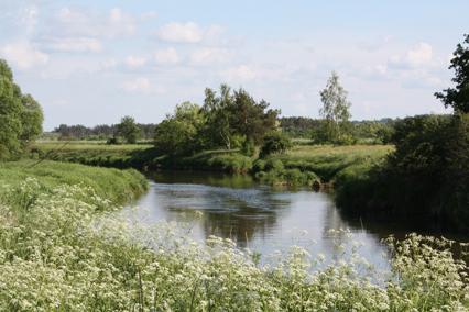 Rzeka w Podzamczu