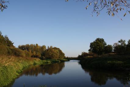 Rzeka - Czarna Nida